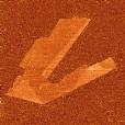 graphene flake